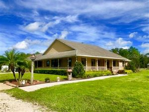 Photo of 280 GUISE ROAD, OSTEEN, FL 32764 (MLS # V4910296)