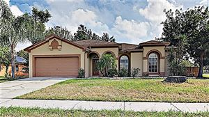 Main image for 10312 SEDGEBROOK PLACE, RIVERVIEW, FL  33569. Photo 1 of 17