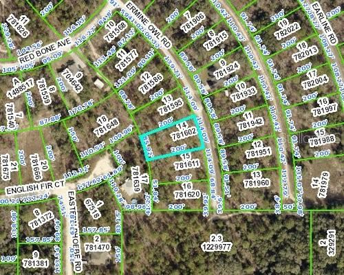 Photo of 14207 ERMINE OWL ROAD, WEEKI WACHEE, FL 34614 (MLS # W7839306)