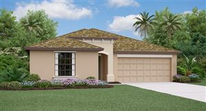 Photo of 935 ZONE TAILED HAWK PLACE, RUSKIN, FL 33570 (MLS # T3200307)