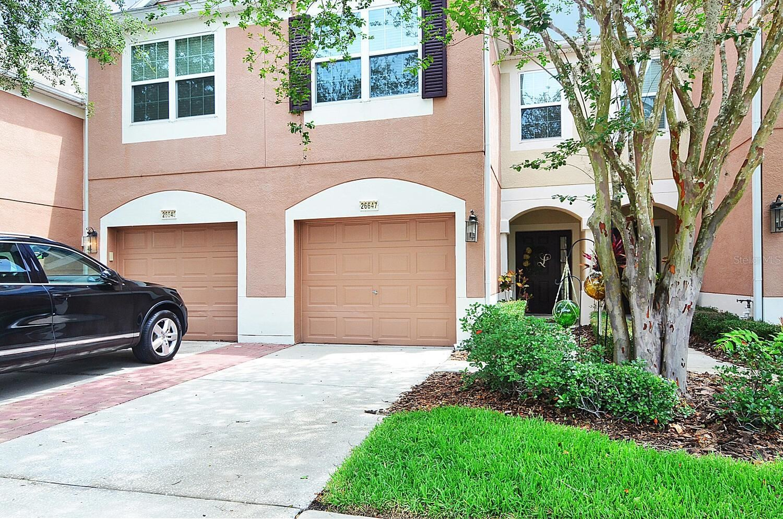 26647 CASTLEVIEW WAY, Wesley Chapel, FL 33544 - #: T3313307