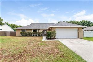 Photo of 4143 ROLLING SPRINGS DRIVE, TAMPA, FL 33624 (MLS # O5790316)