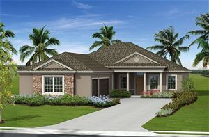 Photo of 16919 MYRTLE HILL HILL, PARRISH, FL 34219 (MLS # A4434325)
