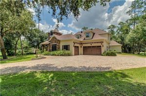 Photo of 14501 STORYS FORD ROAD, ORLANDO, FL 32832 (MLS # O5796326)