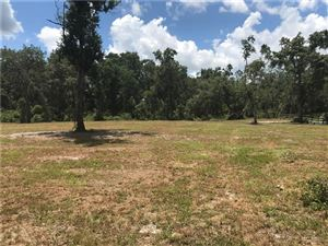 Photo of WINCHESTER LAKE DRIVE, DE LEON SPRINGS, FL 32130 (MLS # V4901330)