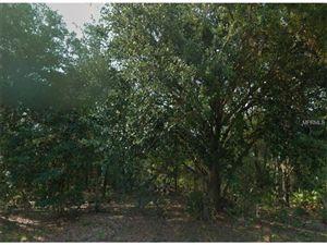 Photo of 213  SPOONBILL DR, POINCIANA, FL 34759 (MLS # S4818331)