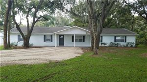 Photo of 10216 GEORGE SMITH ROAD, LITHIA, FL 33547 (MLS # T3195331)