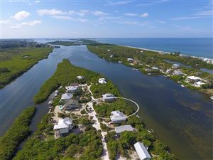 Photo of 441 KETTLE HARBOR DRIVE, PLACIDA, FL 33946 (MLS # D6101332)