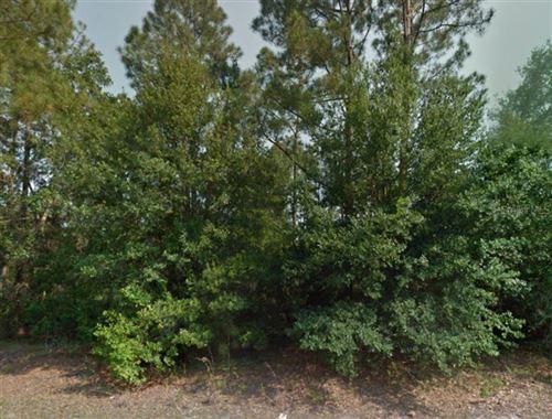 Photo of 214 SPOONBILL DRIVE, POINCIANA, FL 34759 (MLS # S4818332)