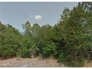 Photo of 246 SPOONBILL DRIVE, POINCIANA, FL 34759 (MLS # S4818337)