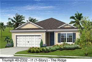 Photo of 4007 COUNTRY WOOD PLACE, PARRISH, FL 34219 (MLS # J908341)