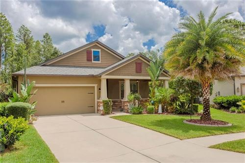 Photo of 8535 MAY PORT COURT, LAND O LAKES, FL 34638 (MLS # W7825341)