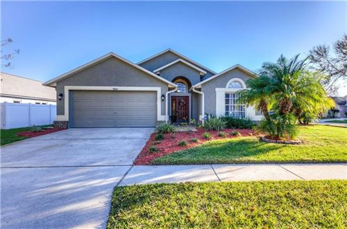 Photo of 7004 COLONY POINT DRIVE, RIVERVIEW, FL 33578 (MLS # T3221344)