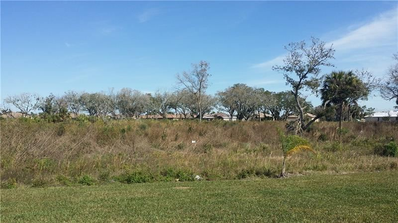 Photo of 156 WANDERING WETLANDS CIRCLE, BRADENTON, FL 34212 (MLS # A4488347)
