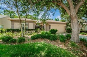 Photo of 1678 BAYHILL DRIVE, OLDSMAR, FL 34677 (MLS # U8048382)