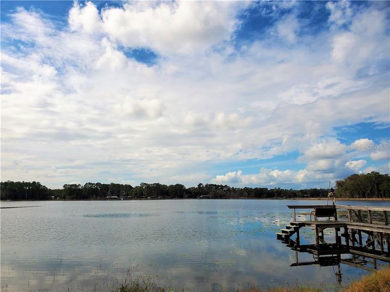 21994 NE 106TH AVENUE, Fort McCoy, FL 32134 - #: OM600382