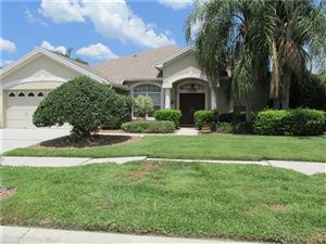 Photo of 18806 FOREST GLEN COURT, TAMPA, FL 33647 (MLS # T3175384)