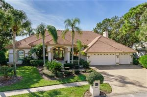 Photo of 4904 TURTLE CREEK TRAIL, OLDSMAR, FL 34677 (MLS # U8025389)
