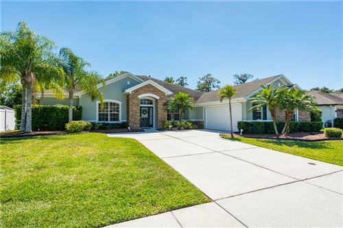 Photo of 11704 NEWBERRY GROVE LOOP, RIVERVIEW, FL 33579 (MLS # O5931390)