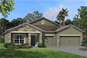 Photo of 18553 MALINCHE LOOP #709, SPRING HILL, FL 34610 (MLS # T3199395)
