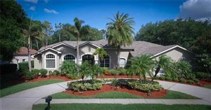 Photo of 4725 JUNIPER DRIVE, PALM HARBOR, FL 34685 (MLS # U8044395)