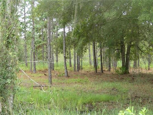Main image for 7651 DRIFTING SAND DRIVE, WESLEY CHAPEL,FL33544. Photo 1 of 9