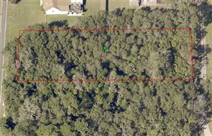 Photo of DELAND, FL 32720 (MLS # V4907399)