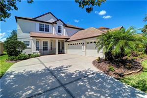 Photo of 8351 OLD TOWN DRIVE, TAMPA, FL 33647 (MLS # T3176402)
