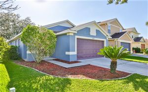 Main image for 11612 CREST CREEK DRIVE, RIVERVIEW, FL  33569. Photo 1 of 21