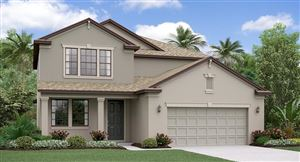 Main image for 10639 BAHAMA WOODSTAR COURT, RIVERVIEW, FL  33579. Photo 1 of 13