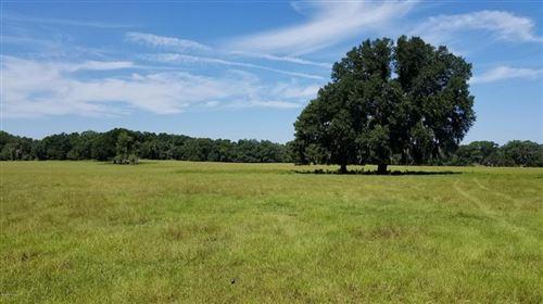 Photo of 151 W Highway 329, CITRA, FL 32113 (MLS # OM564410)