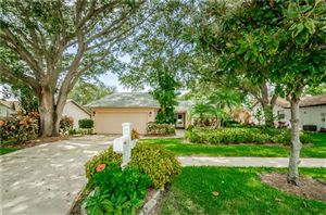 Photo of 4815 ORANGE GROVE WAY, PALM HARBOR, FL 34684 (MLS # U8056412)