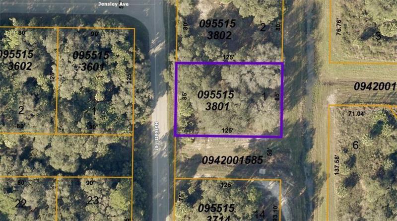 Photo of 0955153801 HALKETT TERRACE, NORTH PORT, FL 34286 (MLS # A4492412)