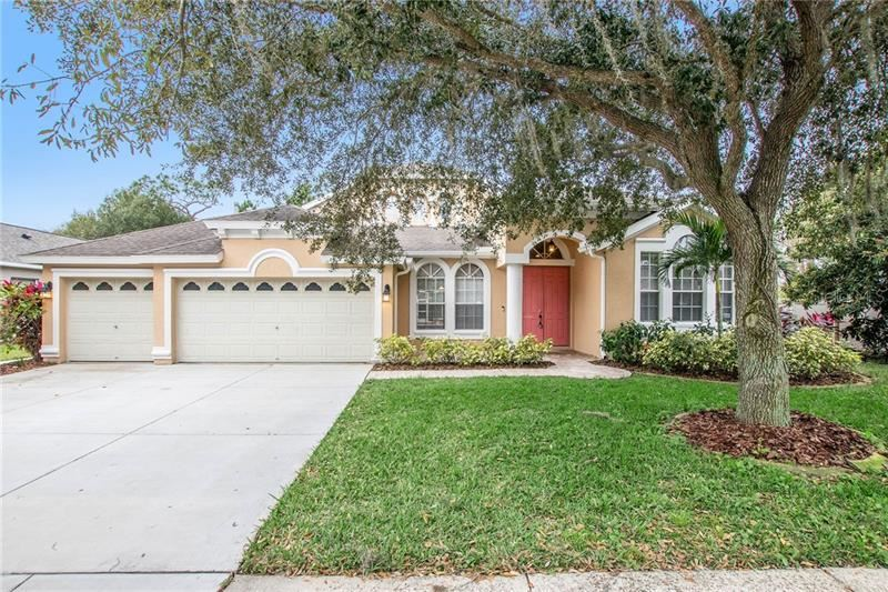 17740 CURRIE FORD DRIVE, Lutz, FL 33558 - #: O5834421
