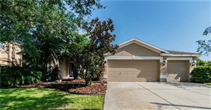 Main image for 19164 DOVE CREEK DRIVE, TAMPA, FL  33647. Photo 1 of 44
