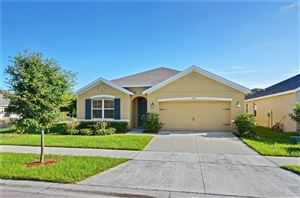 Photo of 10045 GEESE TRAIL CIRCLE, RUSKIN, FL 33573 (MLS # T3187432)