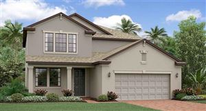 Photo of 11405 CHILLY WATER COURT, RIVERVIEW, FL 33579 (MLS # T3163435)