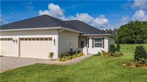 Photo of 1028 GREEN GATE BOULEVARD, GROVELAND, FL 34736 (MLS # G5003440)