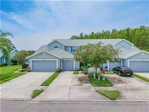 Photo of 269 HEMINGWAY DRIVE, OLDSMAR, FL 34677 (MLS # T3193440)