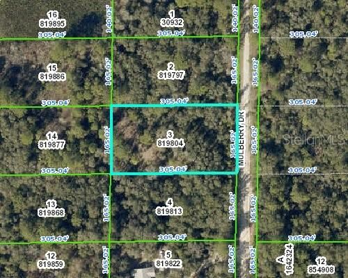 7369 MULBERRY DRIVE, Webster, FL 33597 - #: W7816441