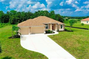 Photo of 6241 FOAL CREEK DRIVE, PARRISH, FL 34219 (MLS # A4438442)