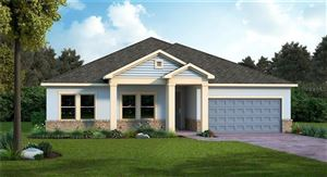 Photo of 17976 PASSIONFLOWER CIR, CLERMONT, FL 34714 (MLS # T3180447)
