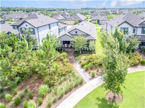 Main image for 3026 CHAPIN PASS, ODESSA,FL33556. Photo 1 of 34
