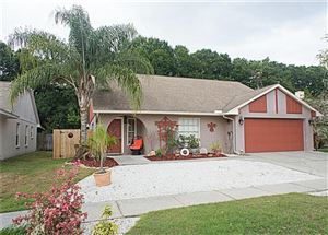Main image for 7237 HOLLOWELL DRIVE, TAMPA, FL  33634. Photo 1 of 18
