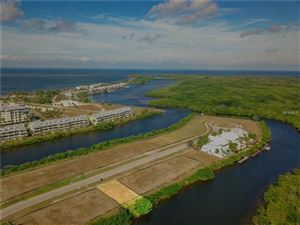 Main image for 3113 CHRISTOPHERS WATCH LANE, RUSKIN,FL33570. Photo 1 of 20
