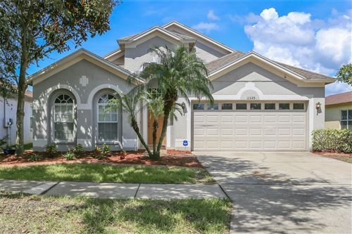 Photo of 11325 FLORA SPRINGS DRIVE, RIVERVIEW, FL 33579 (MLS # T3331462)