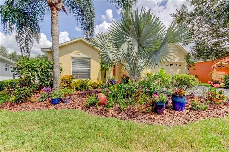10629 LIBERTY BELL DRIVE, Tampa, FL 33647 - MLS#: T3262464