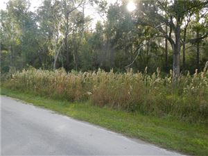 Main image for CLEMENTINE LANE, WESLEY CHAPEL, FL  33543. Photo 1 of 6