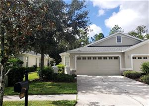 Photo of 3308 CHAPEL CREEK CIRCLE, WESLEY CHAPEL, FL 33544 (MLS # T3203477)