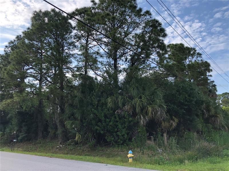Photo of BELLADONNA AVENUE, NORTH PORT, FL 34286 (MLS # U8120489)